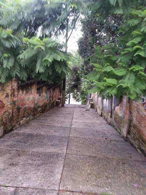Foto - Bairro do Pacaembu