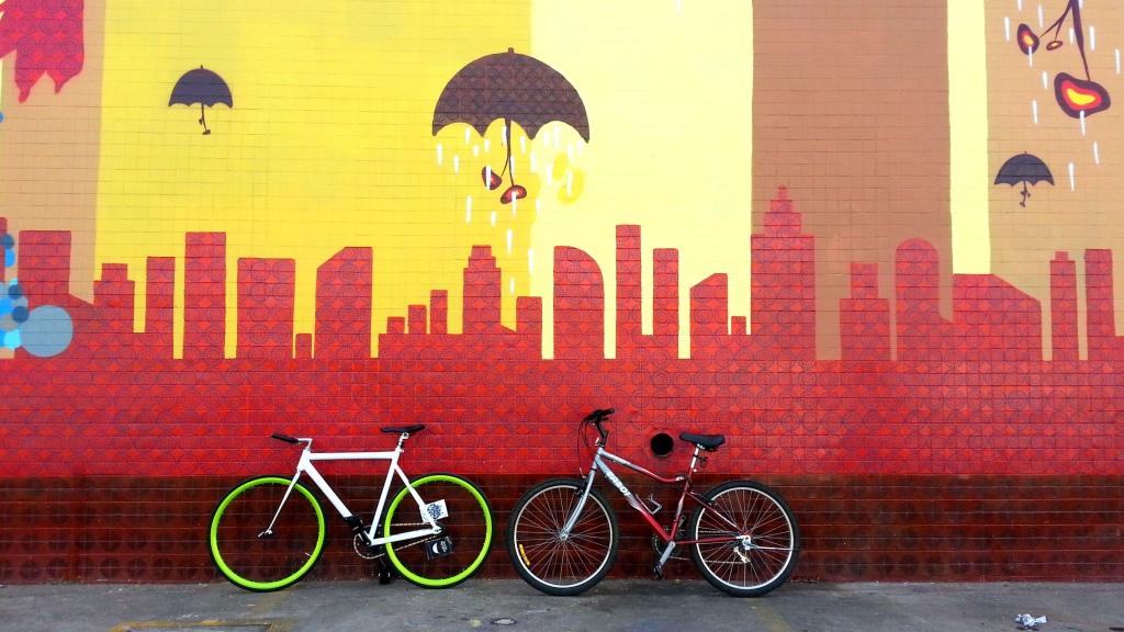 Fixed Gear & Mountain Bike