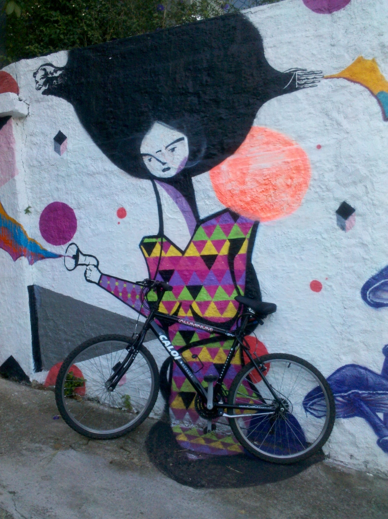 Pacaembu Street Bike & Art